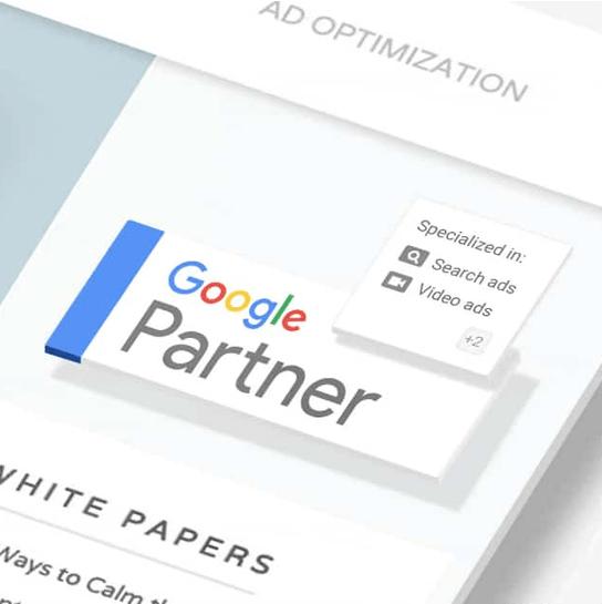 vi-er-google-partner-img